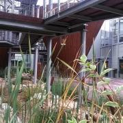 Green City Akkreditációs Képzés Miskolctapolcán